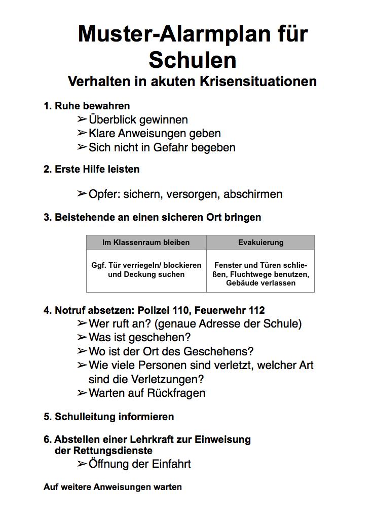 5 erlasse sicherheits und gewaltprventionsmanahmen in schulen rderl d mk v 09112010 - Sicherheitskonzept Muster